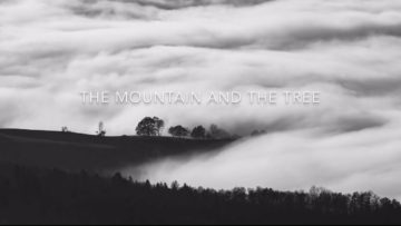 The Mountain and the Tree - Image